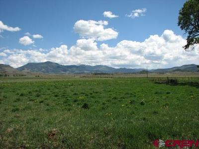 Del Norte Residential Lots & Land For Sale: Cr 14a