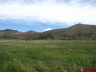 Del Norte Residential Lots & Land For Sale: Pronghorn Ranch