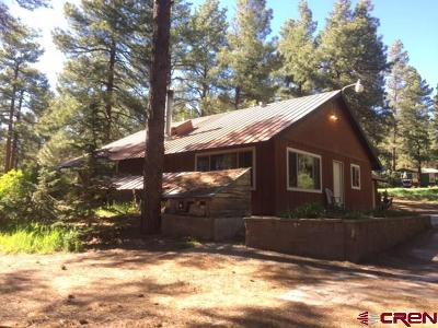 Pagosa Springs Single Family Home For Sale: 338 Cactus