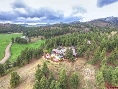 Bayfield Single Family Home For Sale: 2500 Cr 505 #Pine Rid