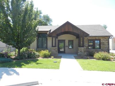 Montrose Single Family Home For Sale: 314 S 6th