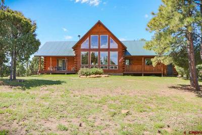 Pagosa Springs Single Family Home For Sale: 416 Yarrow Circle