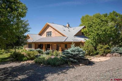 Paonia Single Family Home For Sale: 15631 Fire Mountain