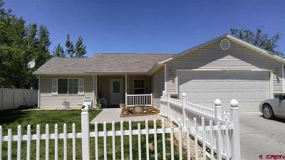 Montrose Single Family Home For Sale: 1557 Branding Iron