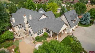 La Plata County Single Family Home For Sale: 885 Red Rock
