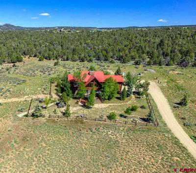 Mancos Single Family Home For Sale: 38080 Road K.4
