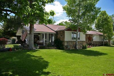 Delta Single Family Home For Sale: 1560 E 3rd