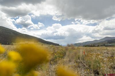 Creede Residential Lots & Land For Sale: 203 Sunset Court