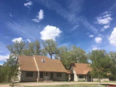 South Fork Single Family Home For Sale: 26357 Hwy 160
