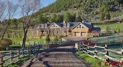 La Plata County Single Family Home For Sale: 3176 Cr 245