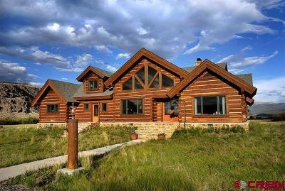 Creede Single Family Home For Sale: 821 Fern Creek