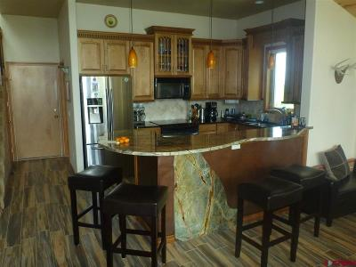 Ouray County Single Family Home For Sale: 842 Pine