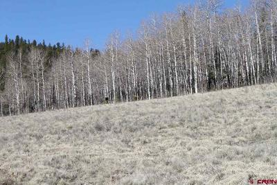 Creede Residential Lots & Land For Sale: 32279 Spring Creek