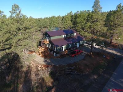 Pagosa Springs Single Family Home For Sale: 384 Monument