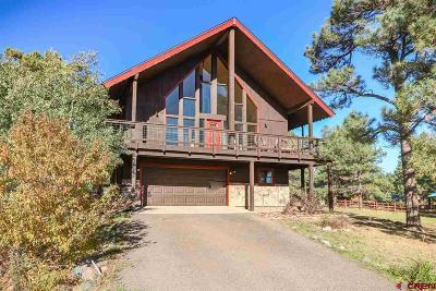 Pagosa Springs Single Family Home For Sale: 105 Par