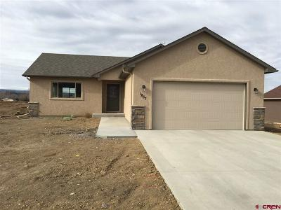 Montrose Single Family Home For Sale: 1837 6438