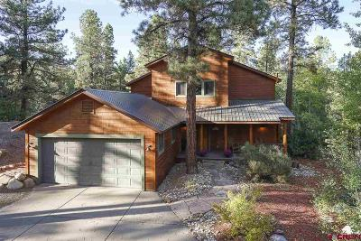 Durango Single Family Home For Sale: 102 Hidden Treasure