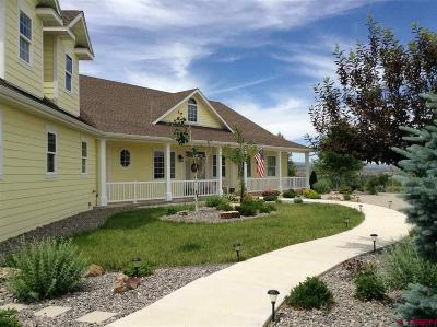 Montrose Single Family Home For Sale: 19311 Pahgre