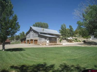 Dolores Single Family Home For Sale: 25680 Road P