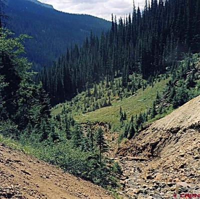 Silverton Residential Lots & Land For Sale: Off Cr 110