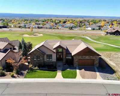 Montrose Single Family Home For Sale: 2218 Fellows