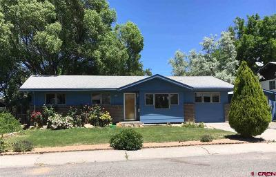 Montrose Single Family Home For Sale: 1005 Oxford