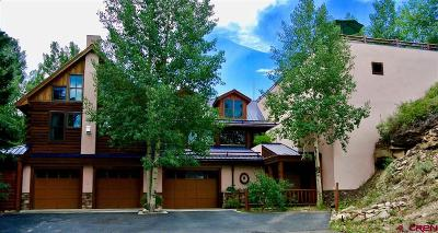 Crested Butte CO Single Family Home For Sale: $5,900,000