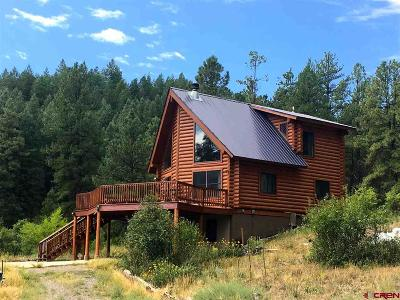 Pagosa Springs Single Family Home For Sale: 99 Tiffany Place