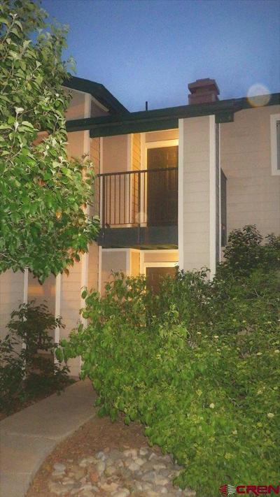 Durango Condo/Townhouse For Sale: 1100 Goeglein Gulch #210
