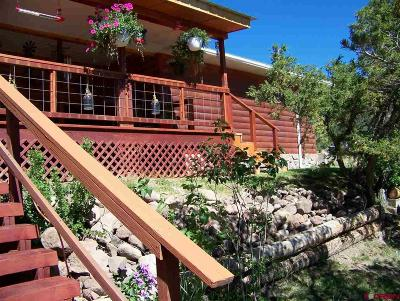 Del Norte Single Family Home For Sale: 351 Pinon Valley Road