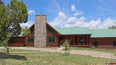 Mancos Single Family Home For Sale: 35797 Road J.9