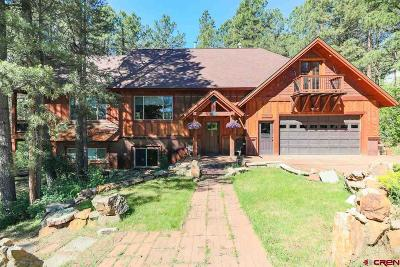Pagosa Springs Single Family Home For Sale: 27 S Emissary Court