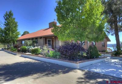 Dolores Single Family Home For Sale: 25218 Road V.6
