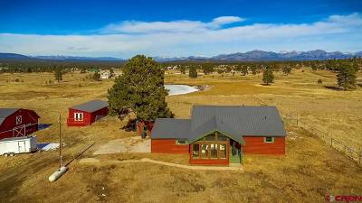 Pagosa Springs Single Family Home For Sale: 555 Paciente