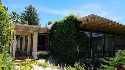 La Plata County Single Family Home For Sale: 433 Cr 239