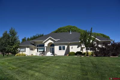 Montrose Single Family Home For Sale: 60870 Kansas
