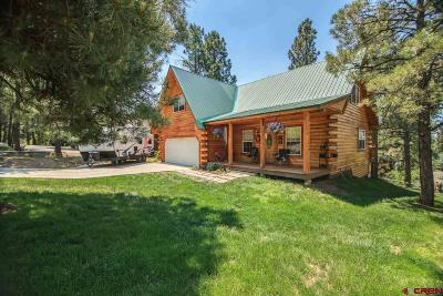 Pagosa Springs Single Family Home For Sale: 76 Masters Circle