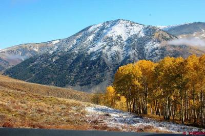 Crested Butte CO Residential Lots & Land For Sale: $785,000