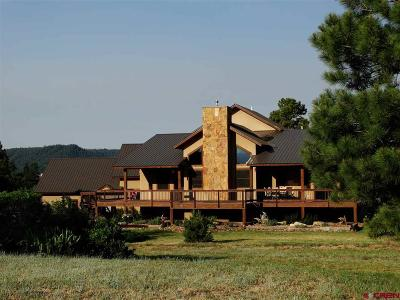 Pagosa Springs Single Family Home For Sale