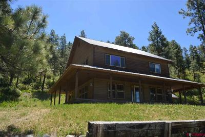 Pagosa Springs Single Family Home For Sale: 4871 E Highway 160