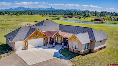 Pagosa Springs Single Family Home For Sale: 1880 Antelope