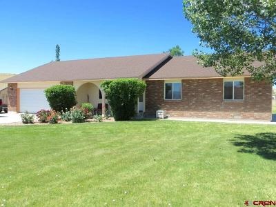 Montrose Single Family Home For Sale: 68777 Open Field