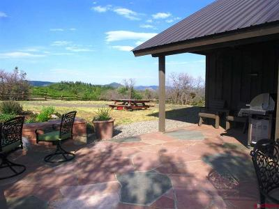 La Plata County Single Family Home For Sale: 1971 Sheep Springs Rd.