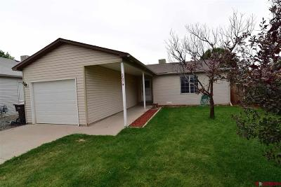 Montrose Single Family Home For Sale: 2674 Milo