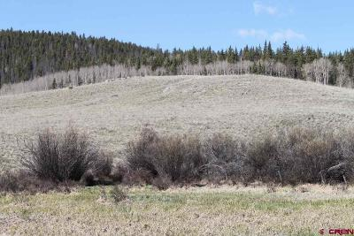 Creede Residential Lots & Land For Sale: 32380 Spring Creek