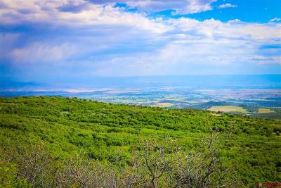 Cedaredge Residential Lots & Land For Sale: Highway 65