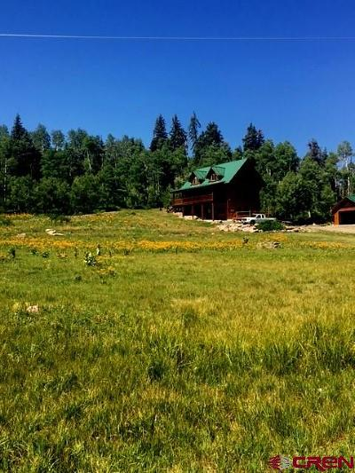 Pagosa Springs Single Family Home For Sale: 232 Spruce Glen