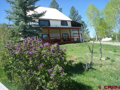 Pagosa Springs Single Family Home For Sale: 410 Grenadier Place