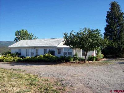 Cedaredge Single Family Home For Sale: 23049 T