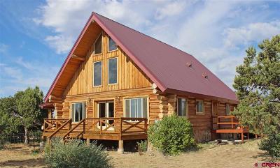 Single Family Home For Sale: 21859 Road V